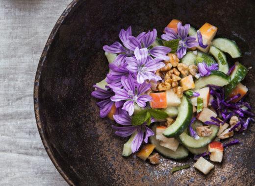 Aopofel-Gurken-Salat mit wilder malve